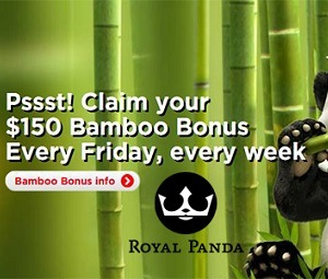 Weekly 50% Bamboo Bonus photo
