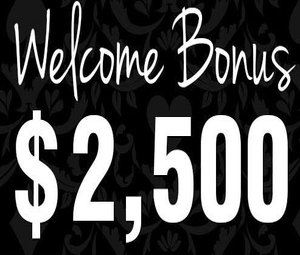 Welcome Offer – Red Stag Casino photo