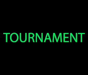 Promotion: $100 Tournament at Red Stag Casino photo